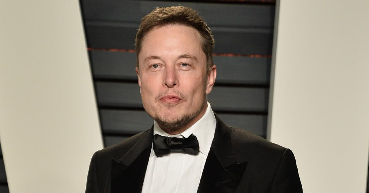 Woman Claims That She Is Elon Musk's Half Sister - The ...